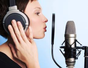 Problems of Professional Voice Users